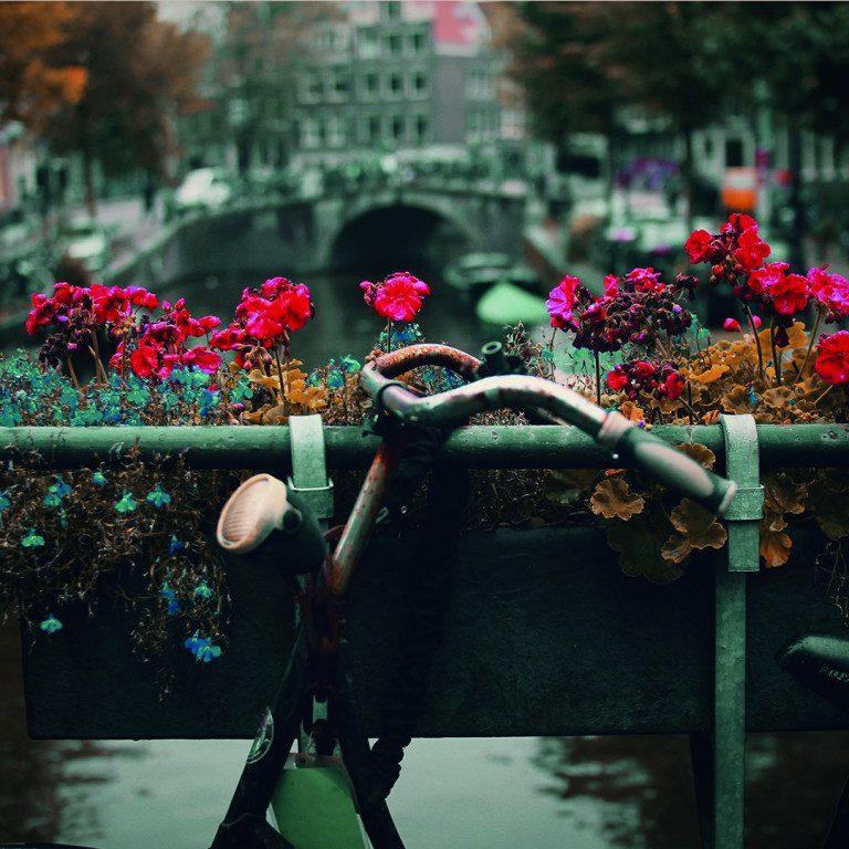 Tips: de leukste plekjes van Amsterdam