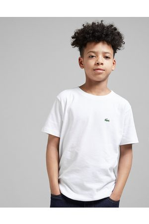Lacoste Poloshirts - Small Logo T-Shirt Junior - Only at JD