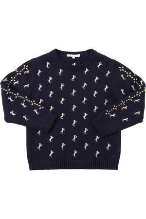 Chloé Wool & Cotton Knit Sweater