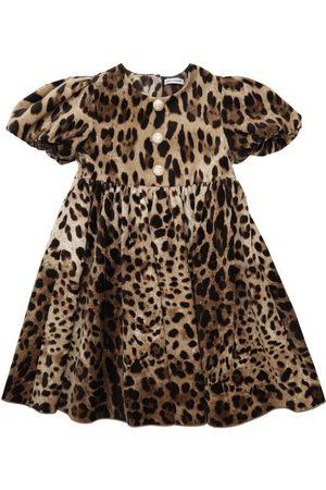 Dolce & Gabbana Leopard Print Stretch Velvet Dress