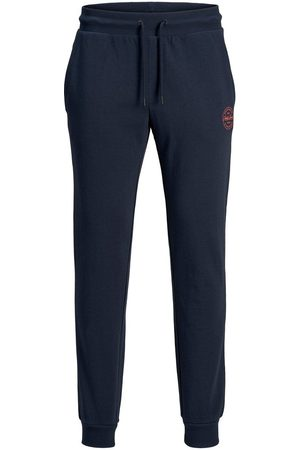 Jack & Jones Gordon Sweatpants Heren Blauw