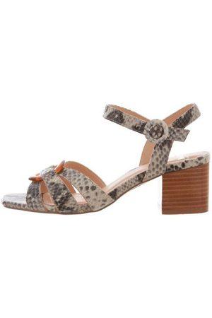 SPM Torty sandal snake