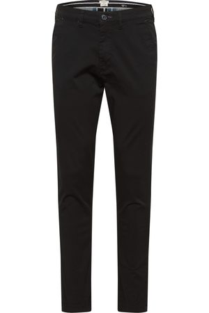 Selected Chino 'Miles