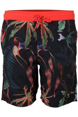 Brunotti Calloway jr boys shorts