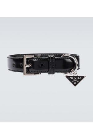 Prada Leather pet collar
