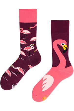Many Mornings Pink flamingo