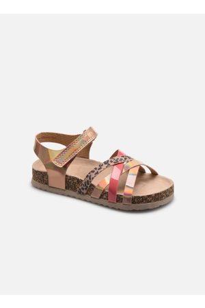 I Love Shoes COTALIK