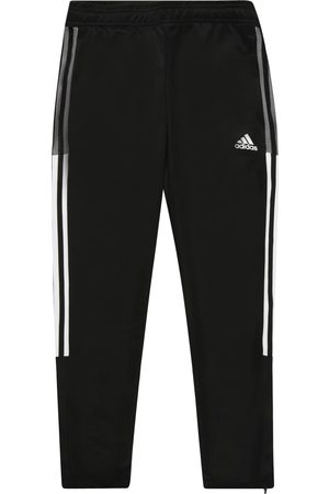 adidas Meisjes Lange broeken - Sportbroek 'TIRO