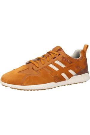GEOX Heren Lage sneakers - Sneakers laag